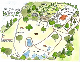 Illustrated map of the Ballyvolane grounds