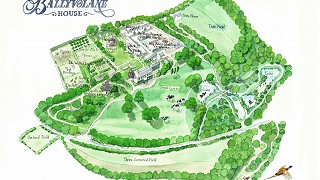Illustrated map of Ballyvolane House by rozjellet.com